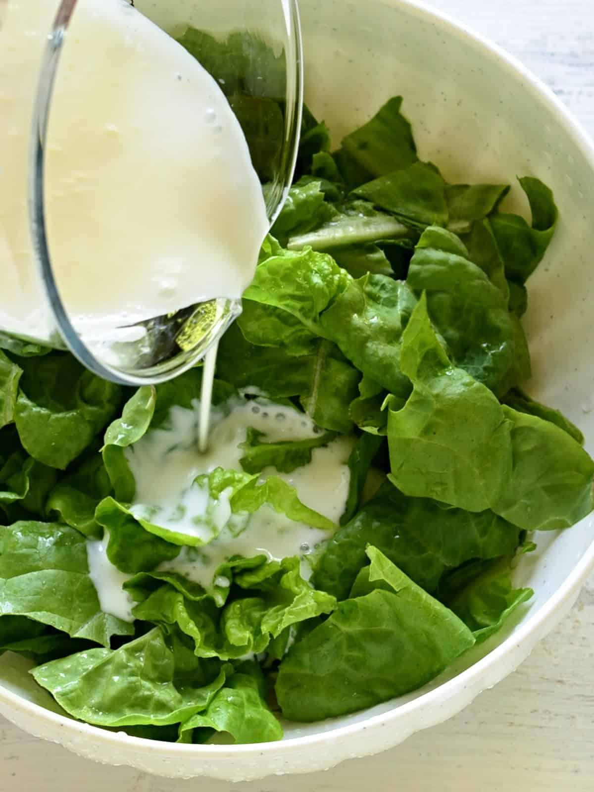 Buttermilch über Kopfsalat-Blätter übergiessen